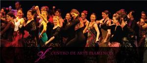 centro de arte flamenco berlin aufführungen