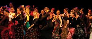Centro Flamenco Berlin Aufführungen
