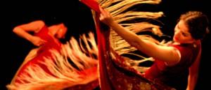 centro flamenco header 3